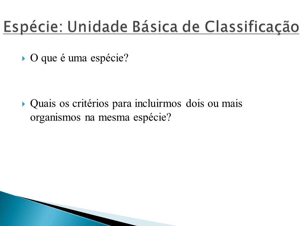 Espécie: Unidade Básica de Classificação