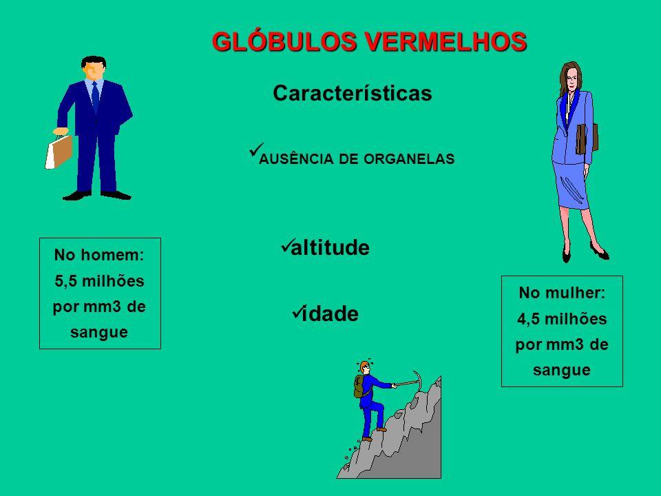 GLÓBULOS VERMELHOS Características AUSÊNCIA DE ORGANELAS altitude