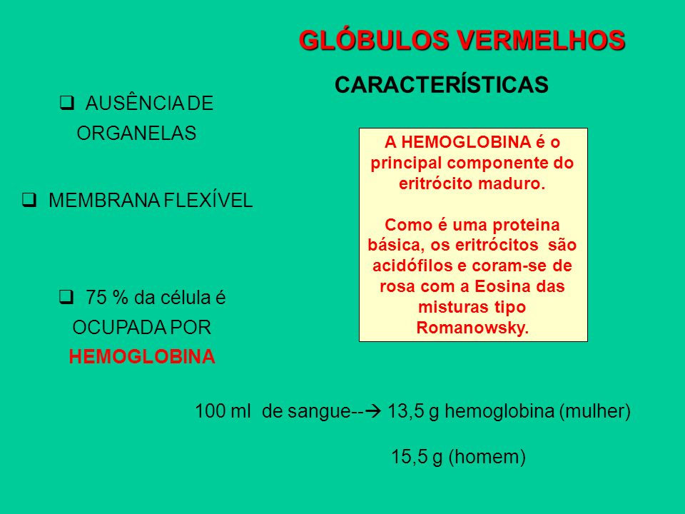 A HEMOGLOBINA é o principal componente do eritrócito maduro.