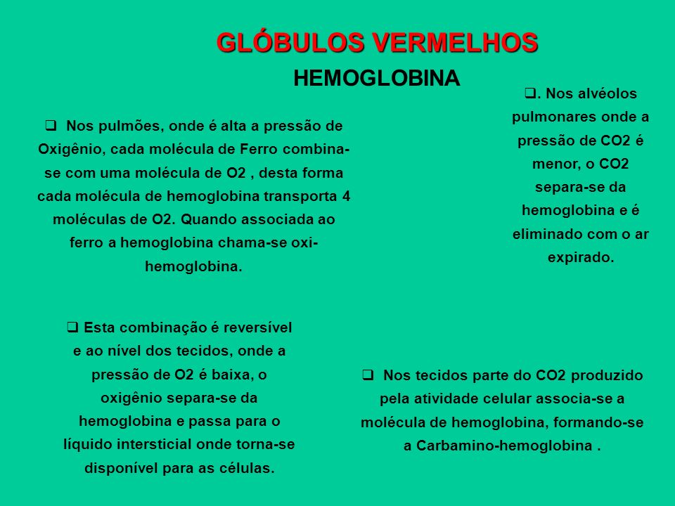 GLÓBULOS VERMELHOS HEMOGLOBINA