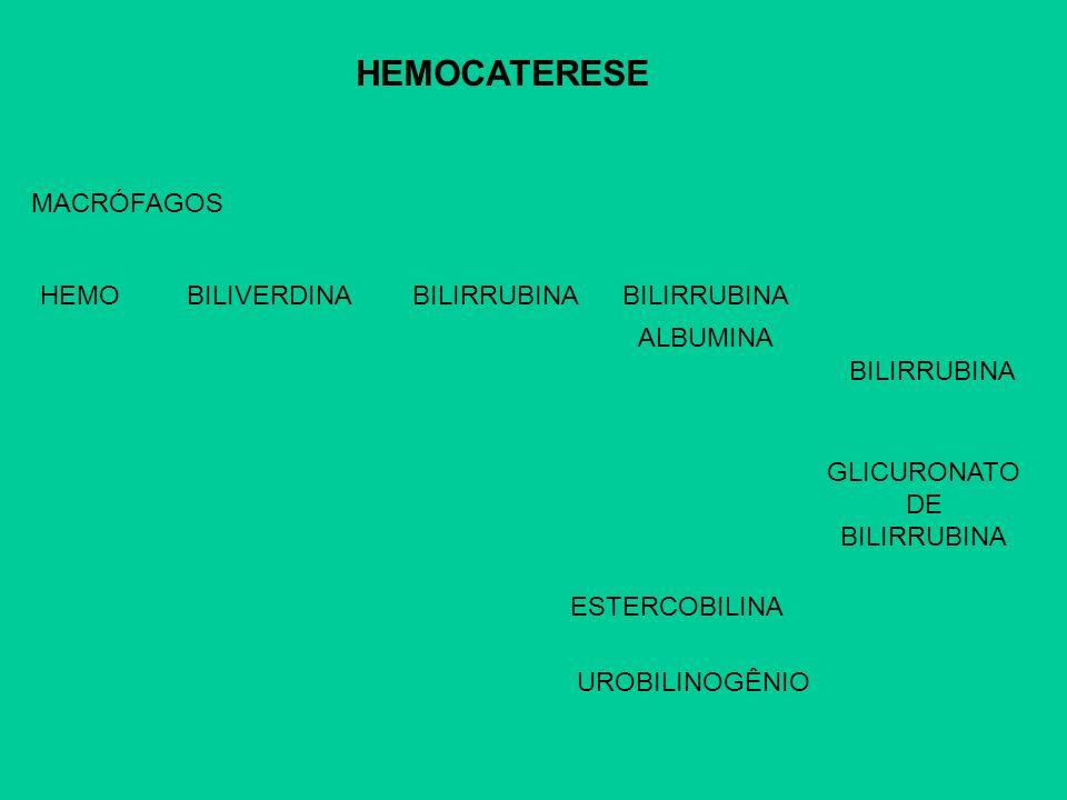 GLICURONATO DE BILIRRUBINA