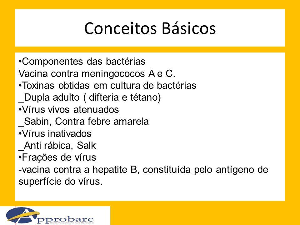 Conceitos Básicos Componentes das bactérias