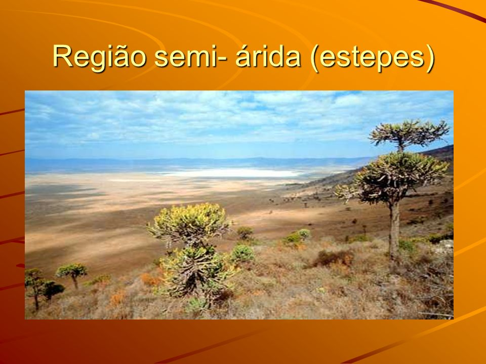 Região semi- árida (estepes)
