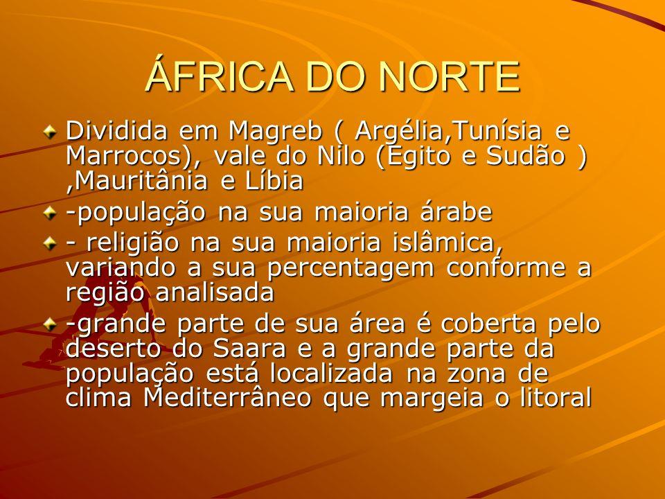 ÁFRICA DO NORTE Dividida em Magreb ( Argélia,Tunísia e Marrocos), vale do Nilo (Egito e Sudão ) ,Mauritânia e Líbia.