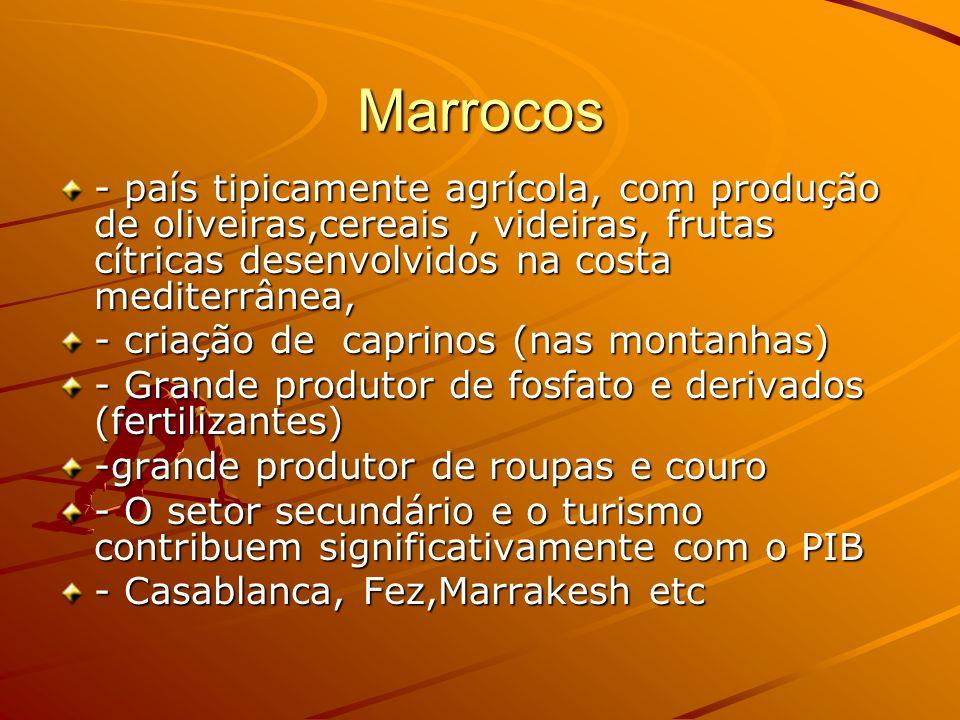 Marrocos - país tipicamente agrícola, com produção de oliveiras,cereais , videiras, frutas cítricas desenvolvidos na costa mediterrânea,