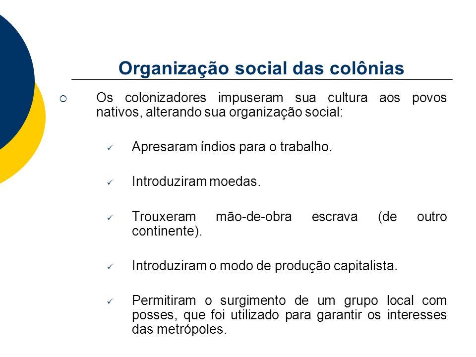 Organização social das colônias