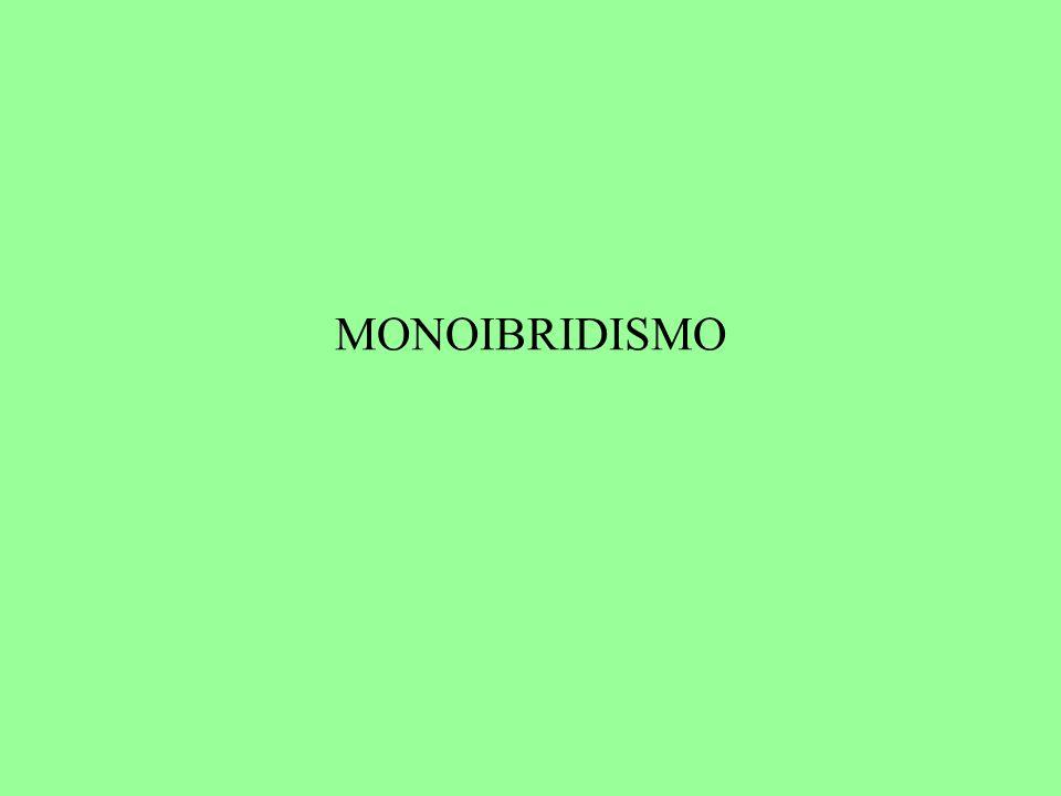 MONOIBRIDISMO