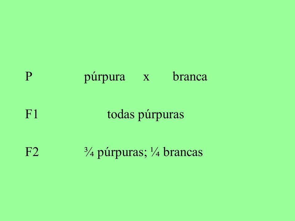 P púrpura x branca F1 todas púrpuras F2 ¾ púrpuras; ¼ brancas