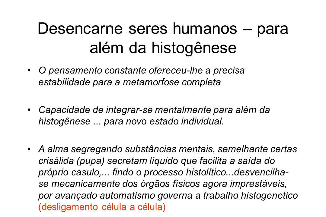 Desencarne seres humanos – para além da histogênese
