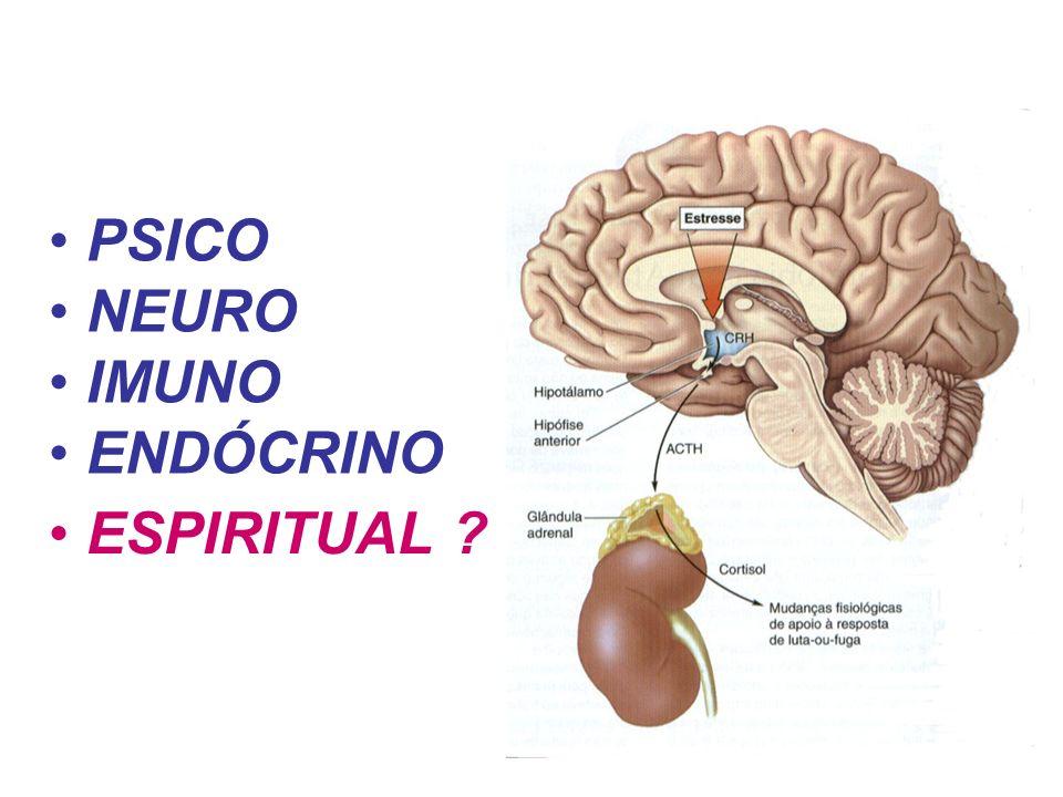 PSICO NEURO IMUNO ENDÓCRINO ESPIRITUAL 19
