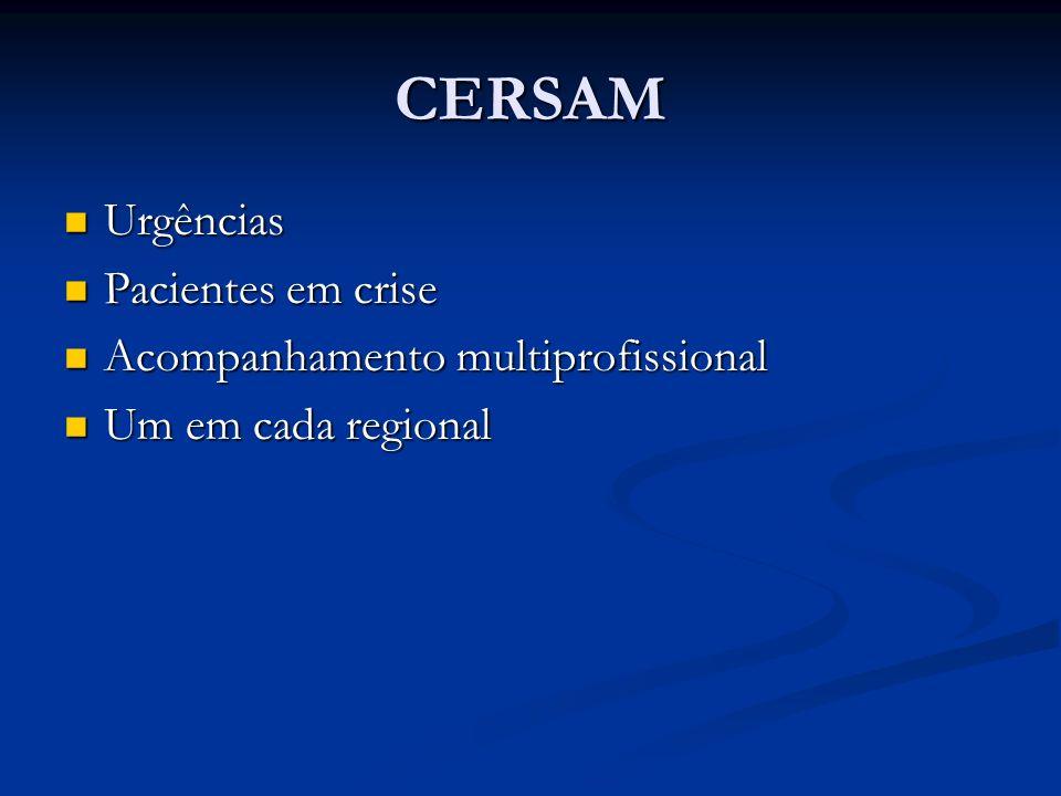CERSAM Urgências Pacientes em crise Acompanhamento multiprofissional