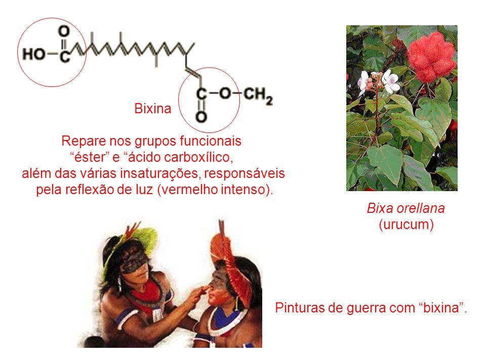 Repare nos grupos funcionais éster e ácido carboxílico,