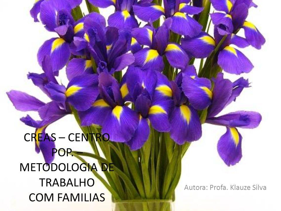 CREAS – CENTRO POP. – METODOLOGIA DE TRABALHO COM FAMILIAS