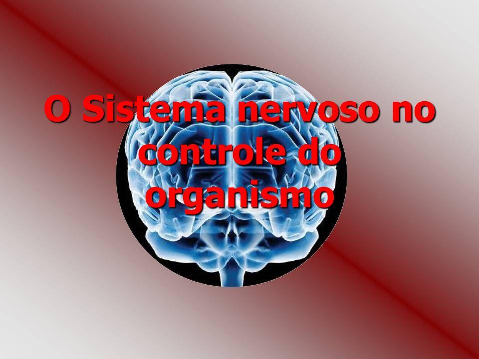 O Sistema nervoso no controle do organismo