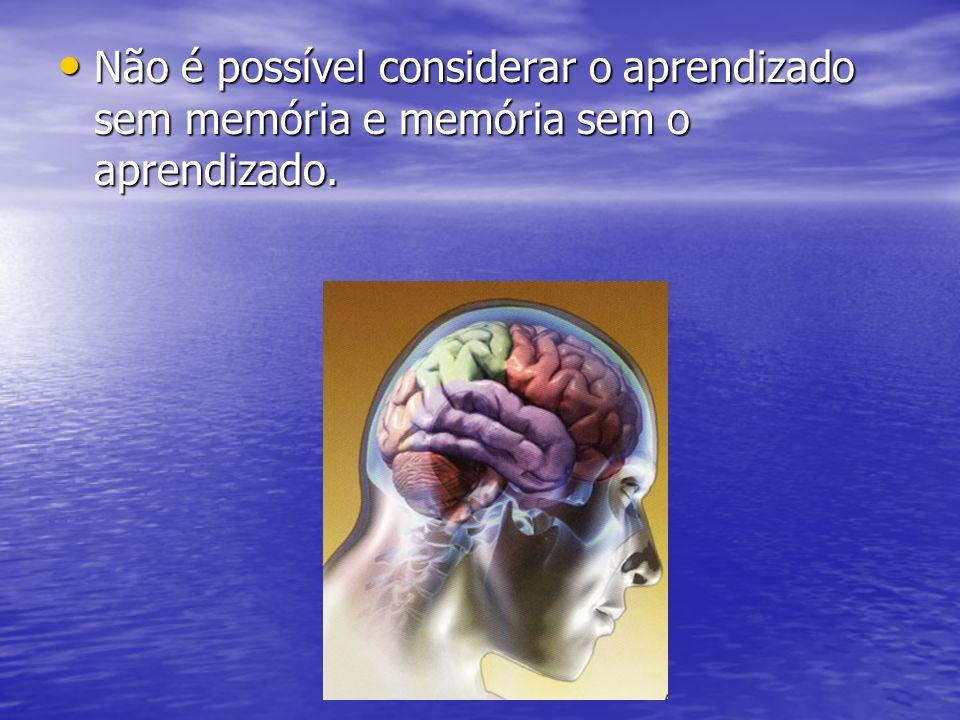 Não é possível considerar o aprendizado sem memória e memória sem o aprendizado.
