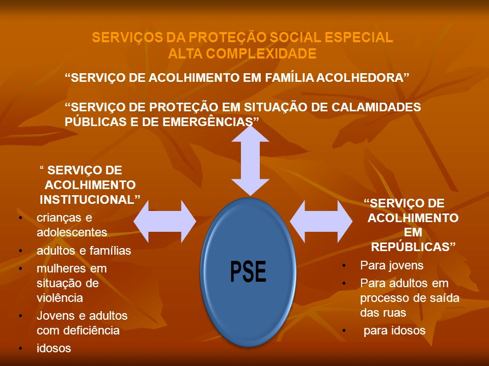 SERVIÇOS DA PROTEÇÃO SOCIAL ESPECIAL ALTA COMPLEXIDADE