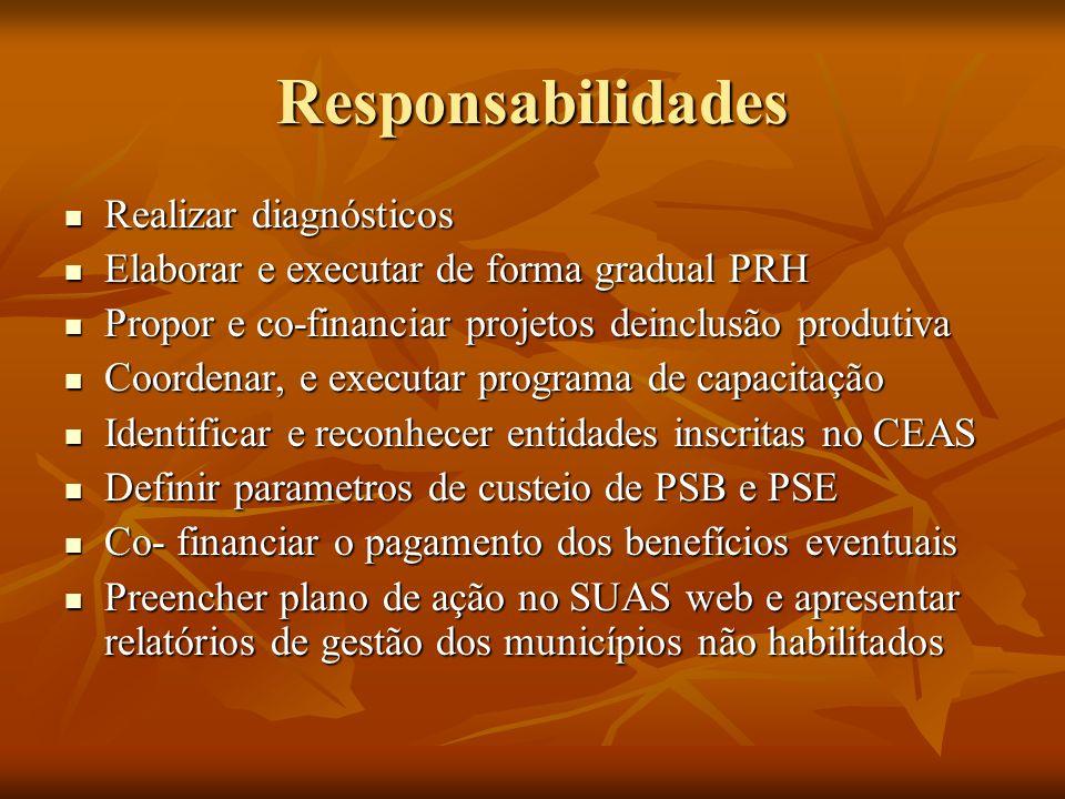 Responsabilidades Realizar diagnósticos