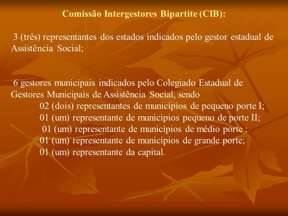 Comissão Intergestores Bipartite (CIB):