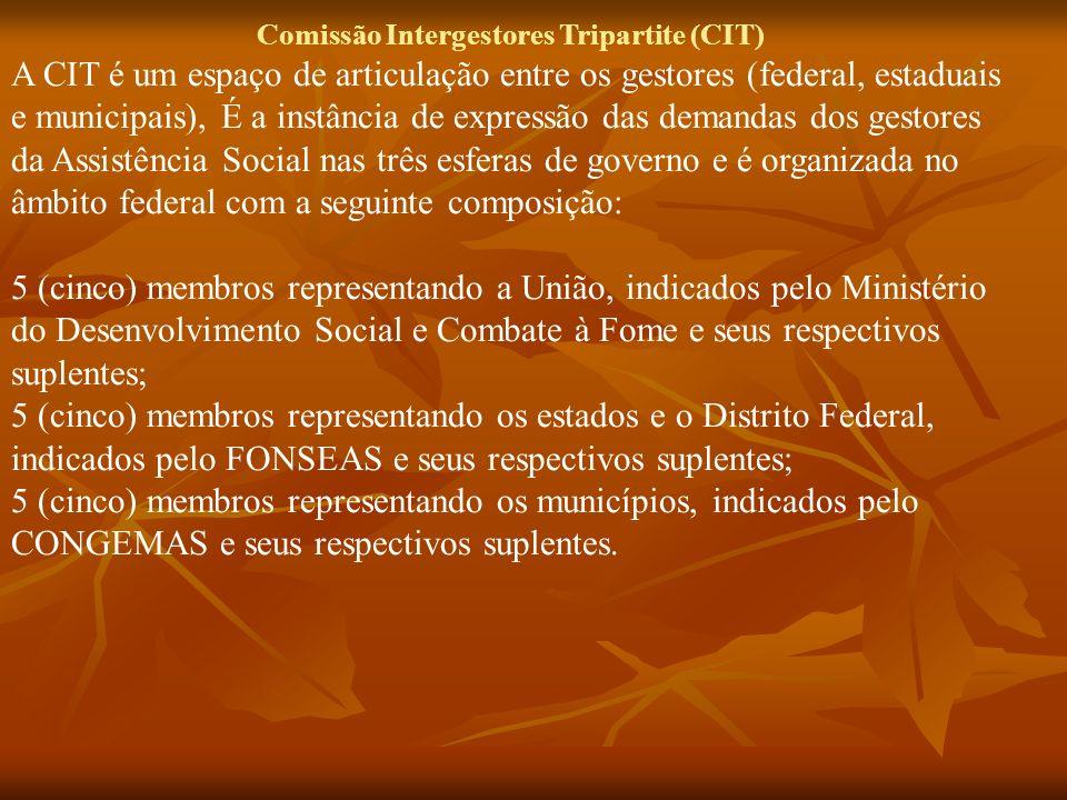 Comissão Intergestores Tripartite (CIT)
