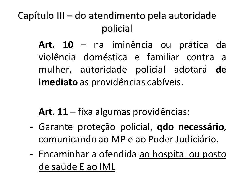 Capítulo III – do atendimento pela autoridade policial