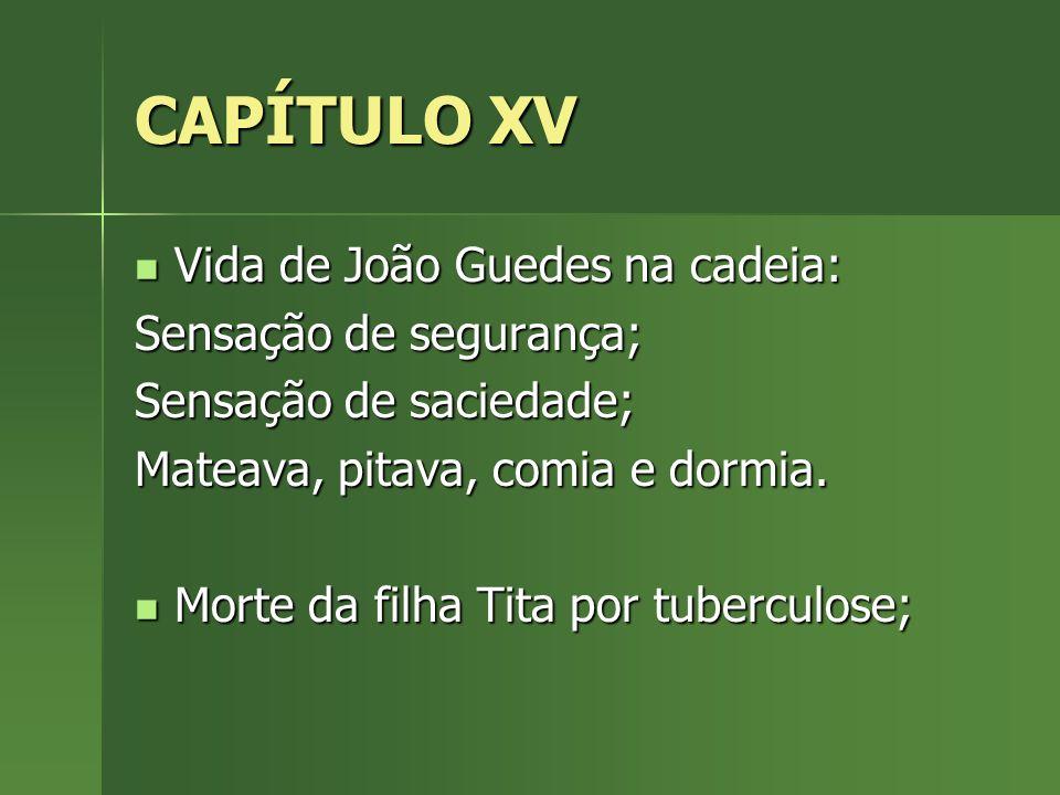 CAPÍTULO XV Vida de João Guedes na cadeia: Sensação de segurança;