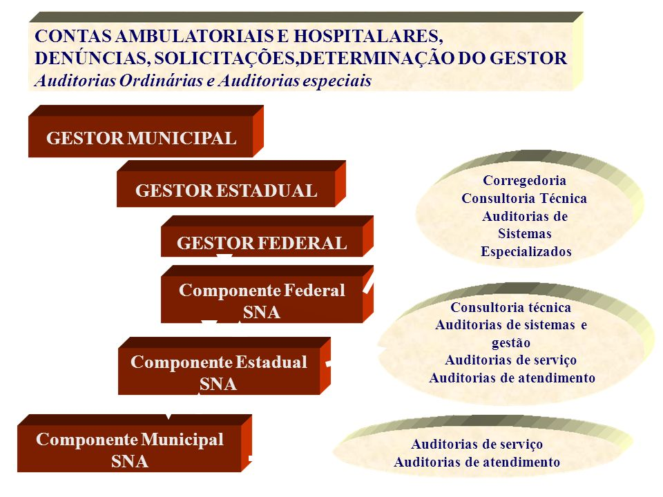 CONTAS AMBULATORIAIS E HOSPITALARES,