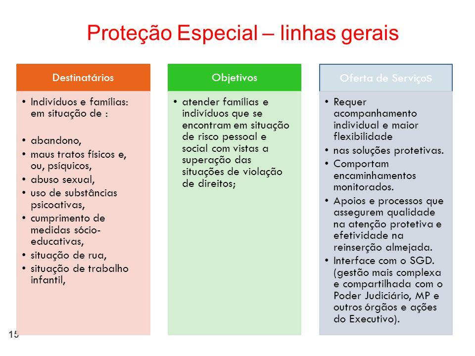 Proteção Especial – linhas gerais