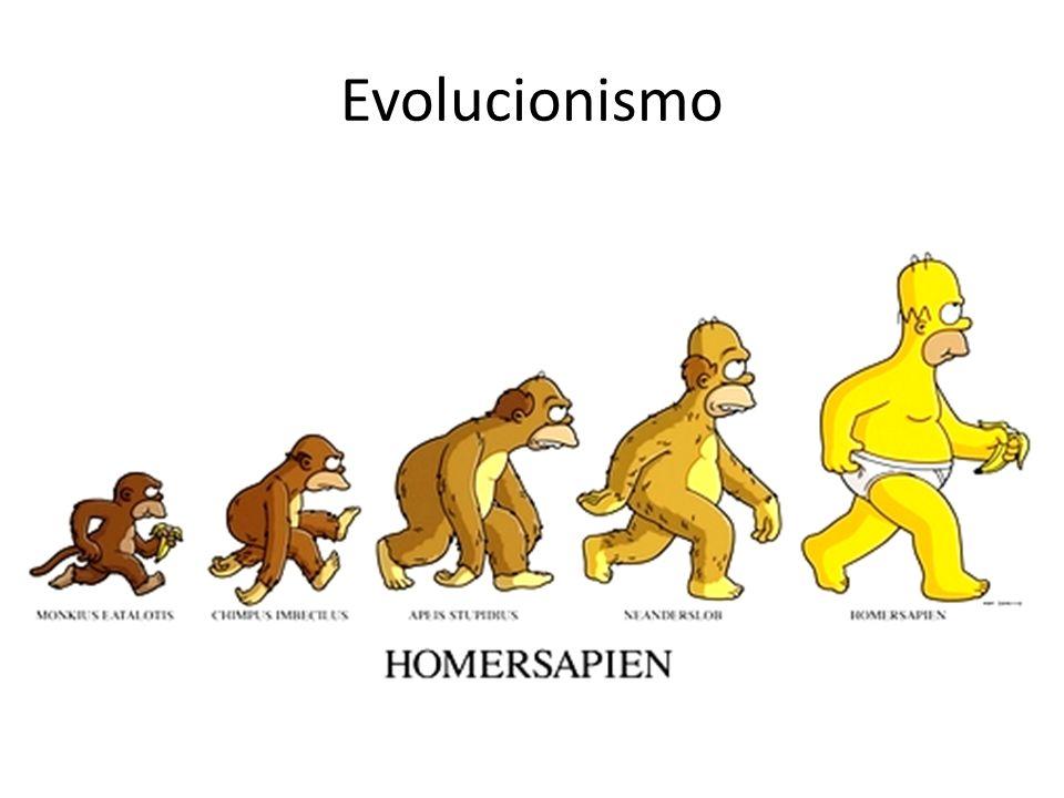 Evolucionismo Agora que os argumentos mais comuns do criacionismo foram apresentados, vamos passar para o evolucionismo.