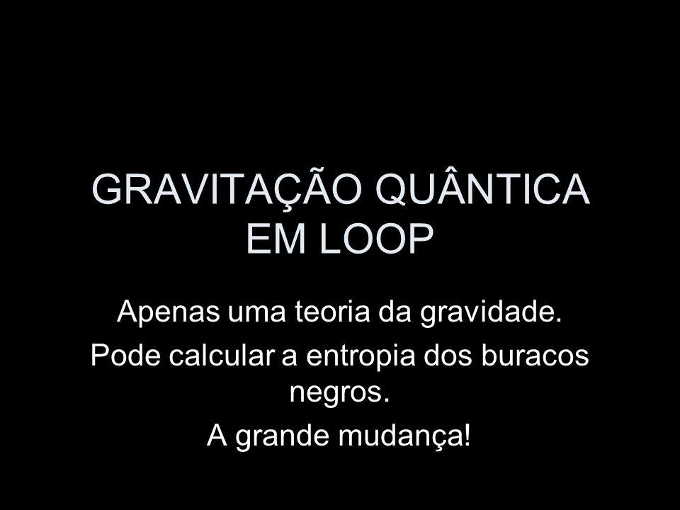 GRAVITAÇÃO QUÂNTICA EM LOOP