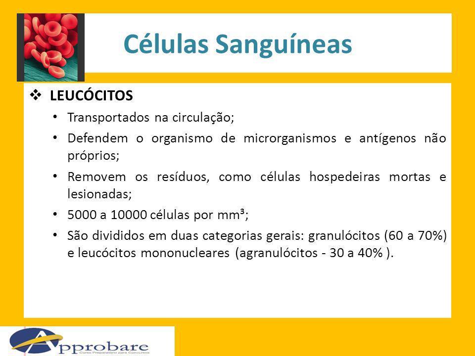 Células Sanguíneas LEUCÓCITOS Transportados na circulação;