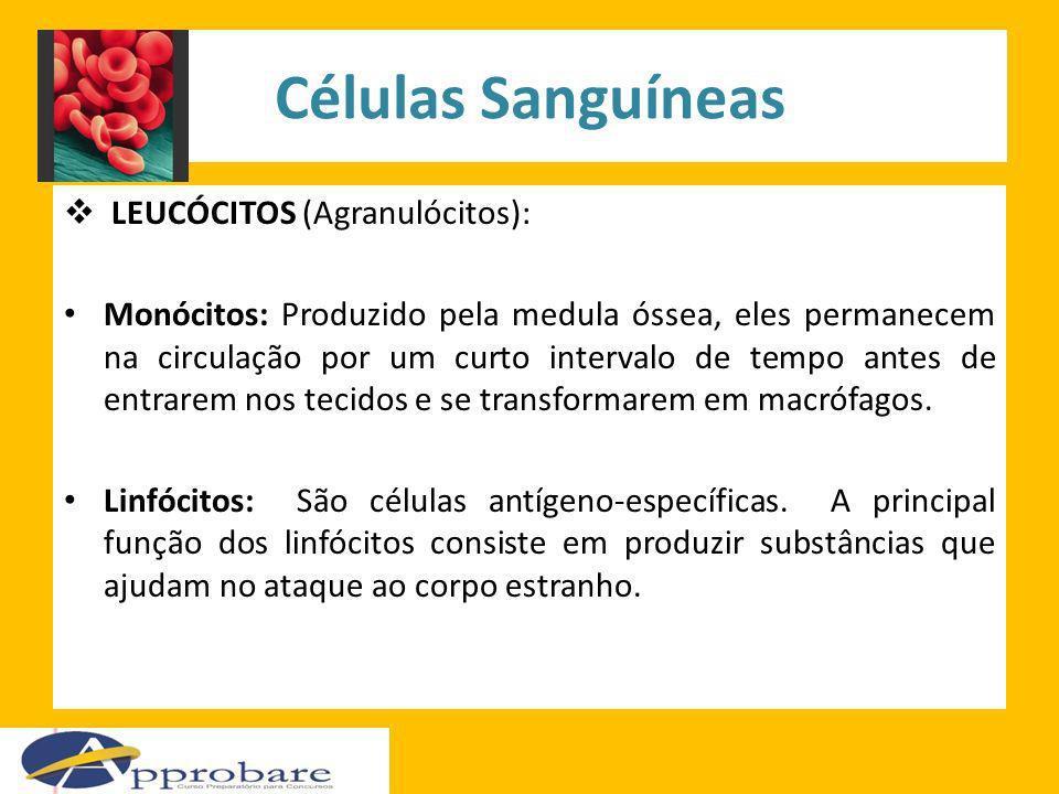 Células Sanguíneas LEUCÓCITOS (Agranulócitos):