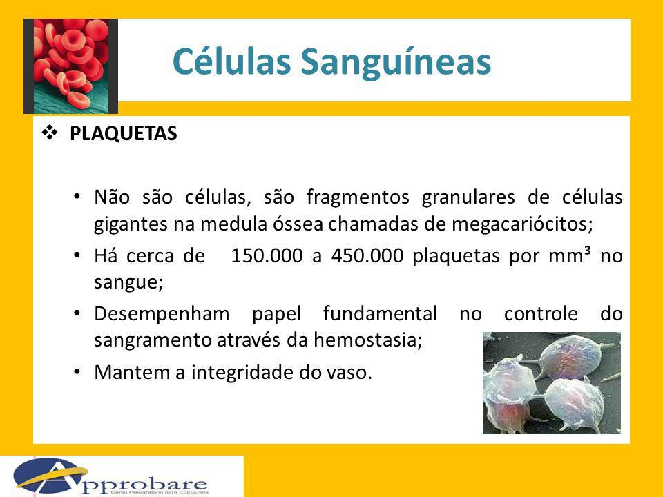 Células Sanguíneas PLAQUETAS