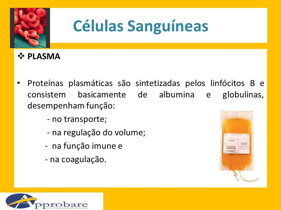 Células Sanguíneas PLASMA