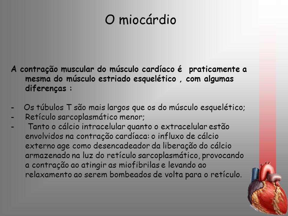 O miocárdioA contração muscular do músculo cardíaco é praticamente a mesma do músculo estriado esquelético , com algumas diferenças :