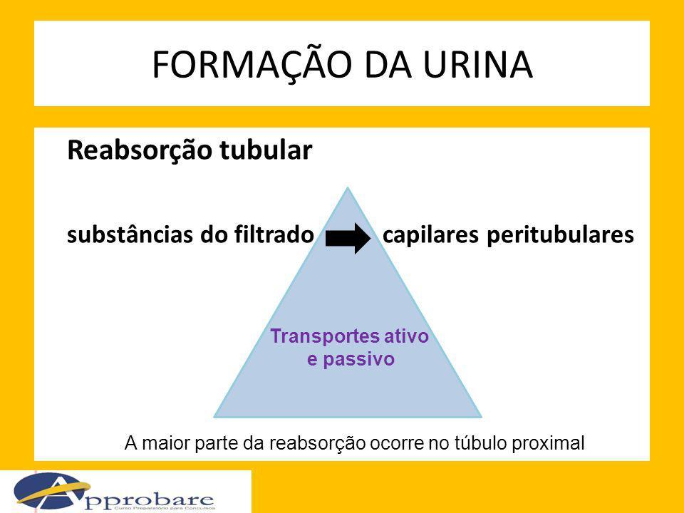 FORMAÇÃO DA URINA Reabsorção tubular