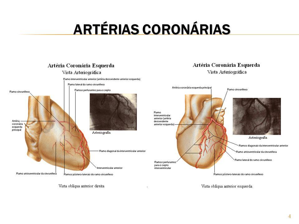 ARTÉRIAS CORONÁRIAS