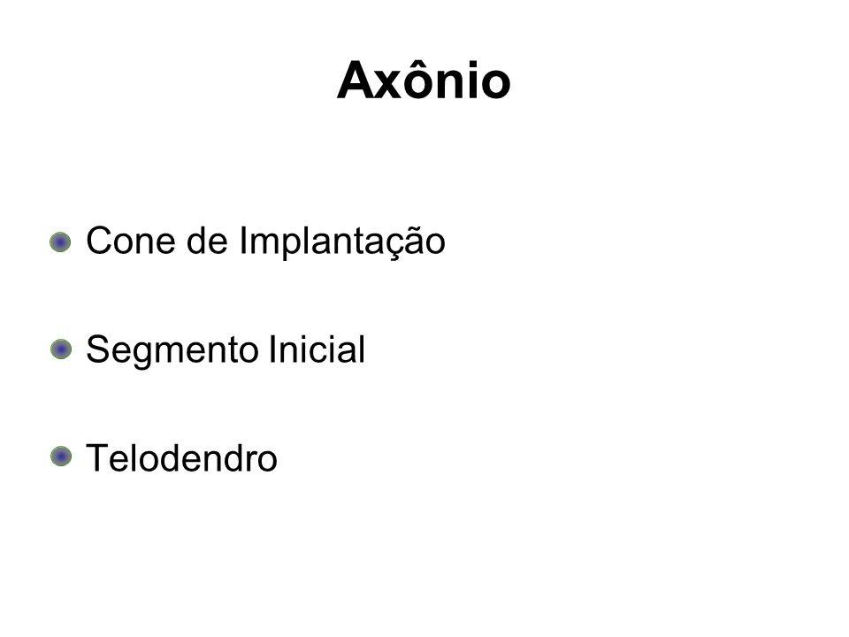 Axônio Cone de Implantação Segmento Inicial Telodendro