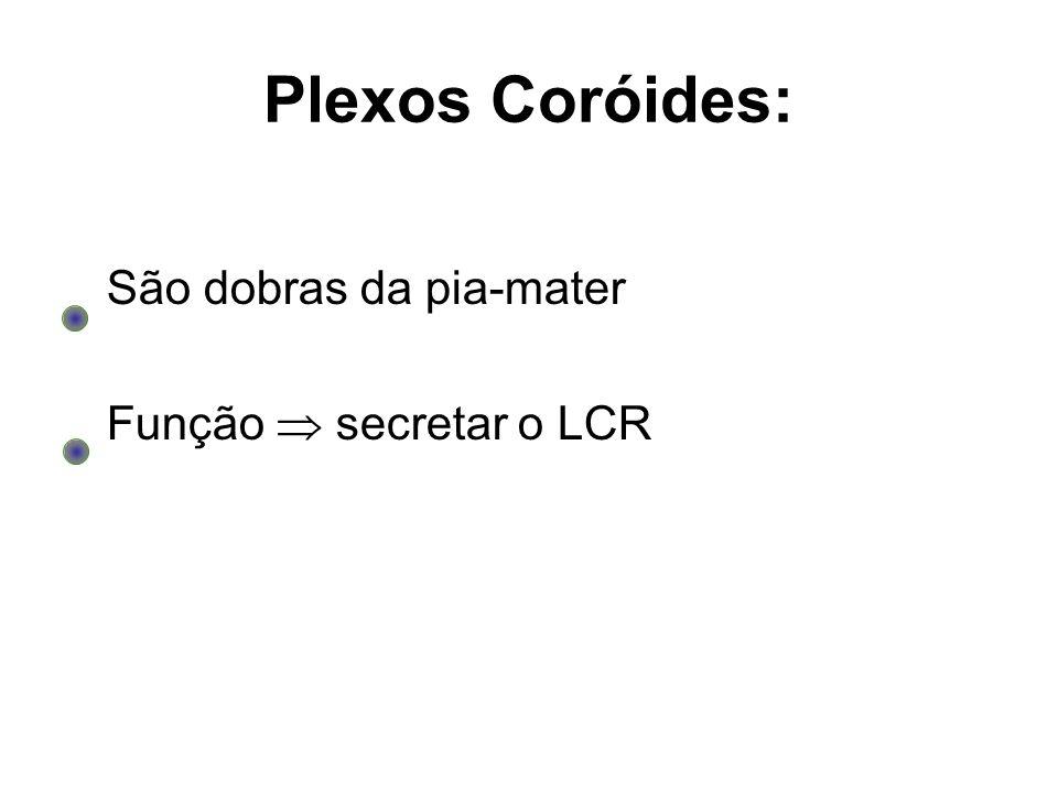 Plexos Coróides: São dobras da pia-mater Função  secretar o LCR