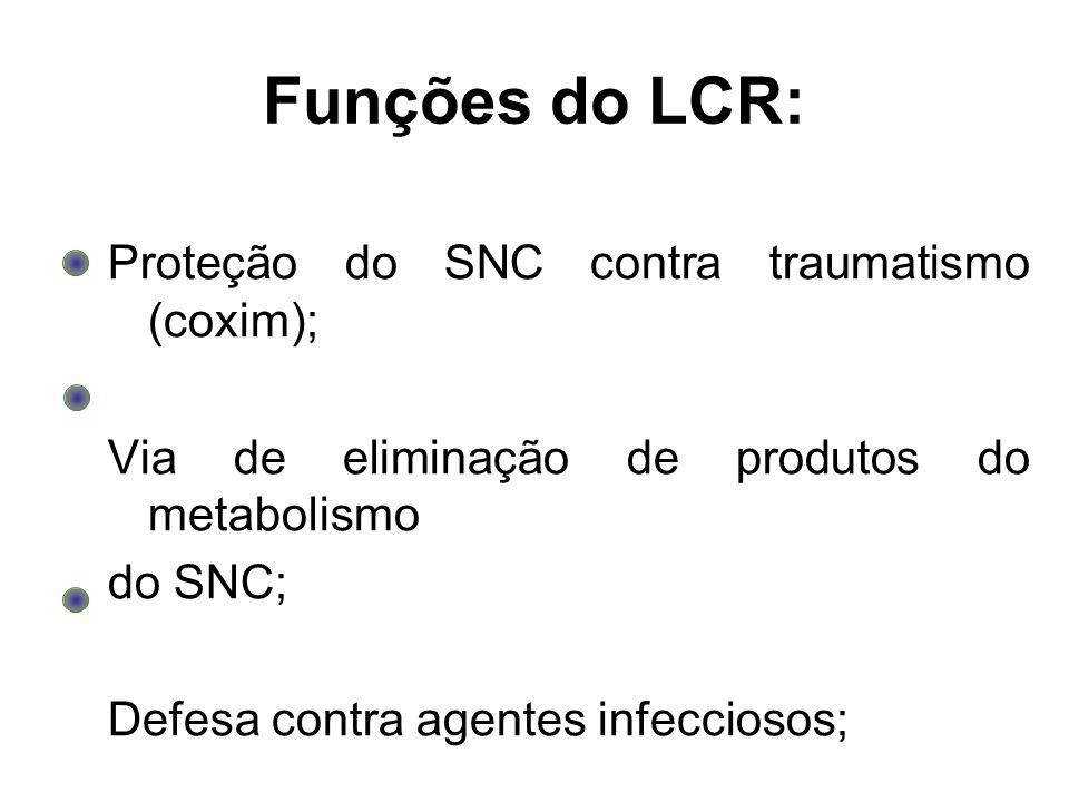 Funções do LCR: Proteção do SNC contra traumatismo (coxim);
