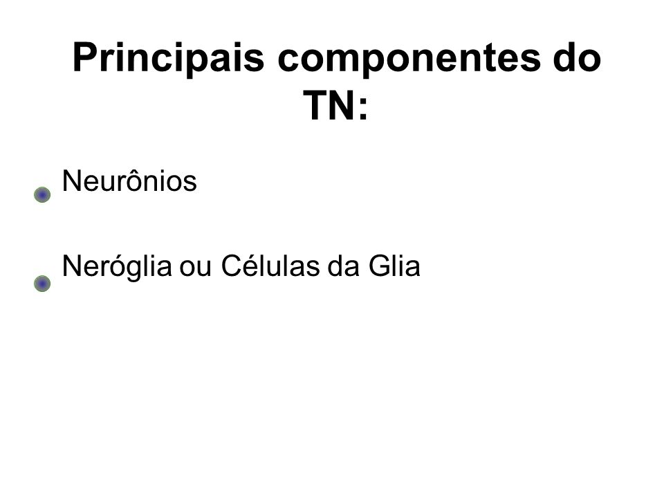Principais componentes do TN: