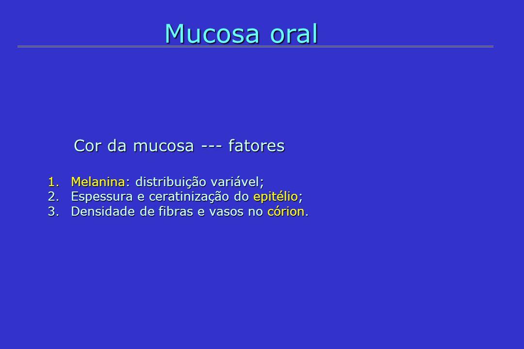 Mucosa oral Cor da mucosa --- fatores Melanina: distribuição variável;
