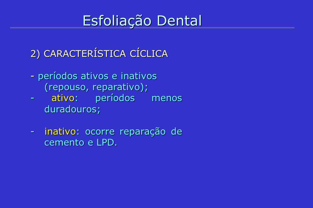 Esfoliação Dental 2) CARACTERÍSTICA CÍCLICA