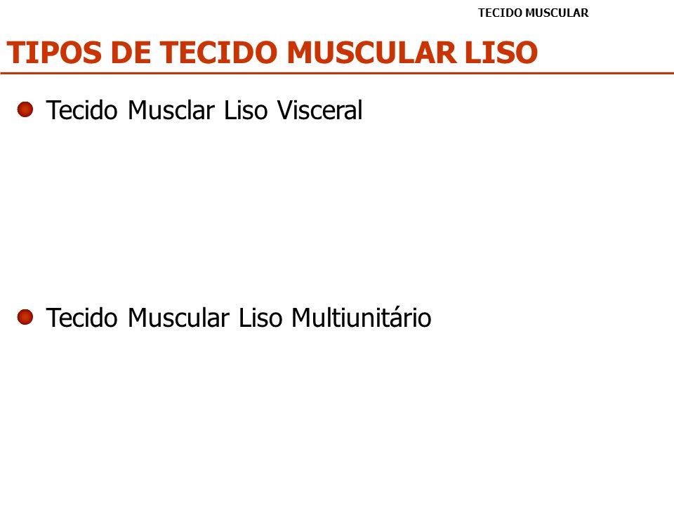 TIPOS DE TECIDO MUSCULAR LISO