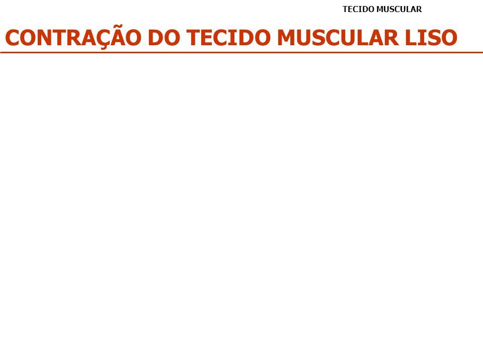 CONTRAÇÃO DO TECIDO MUSCULAR LISO