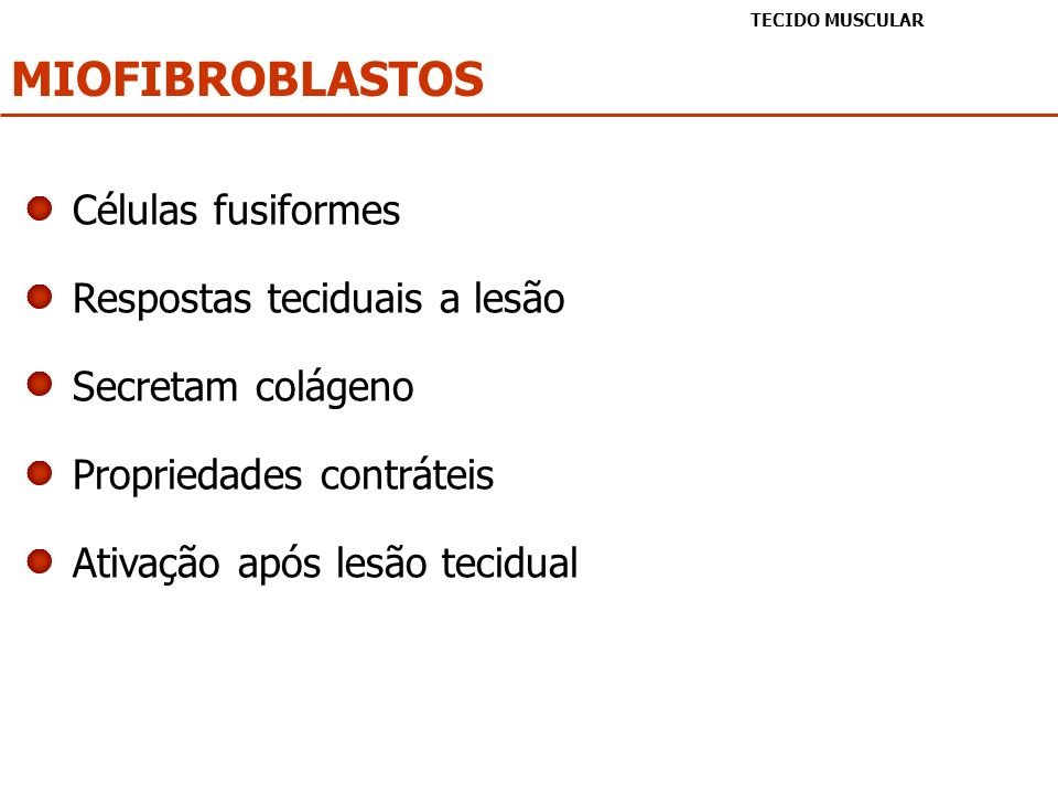 MIOFIBROBLASTOS Células fusiformes Respostas teciduais a lesão