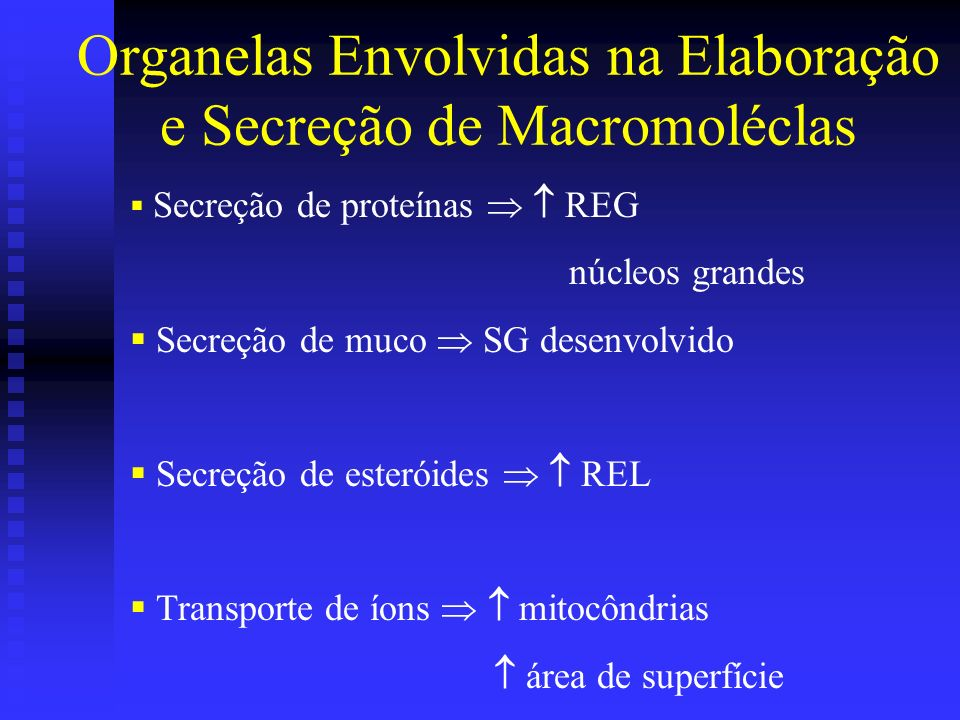 Organelas Envolvidas na Elaboração e Secreção de Macromoléclas