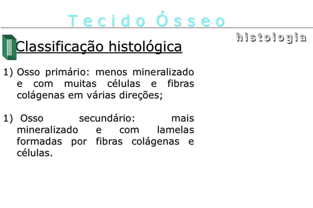 Classificação histológica