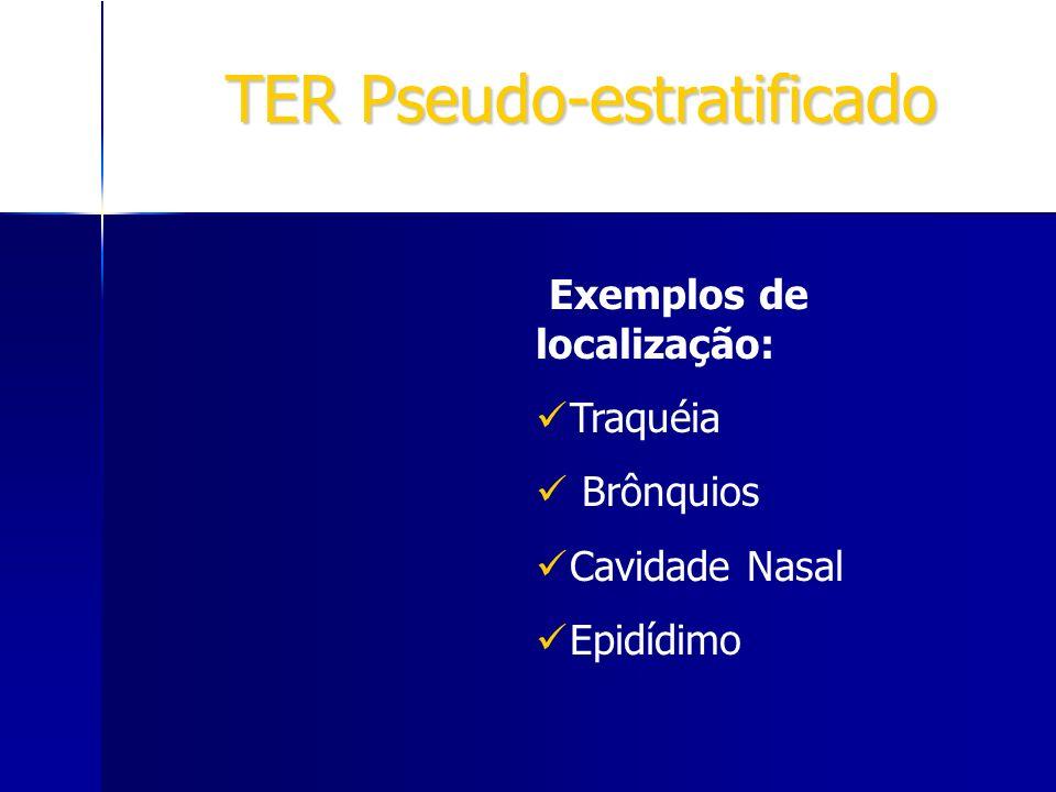 TER Pseudo-estratificado