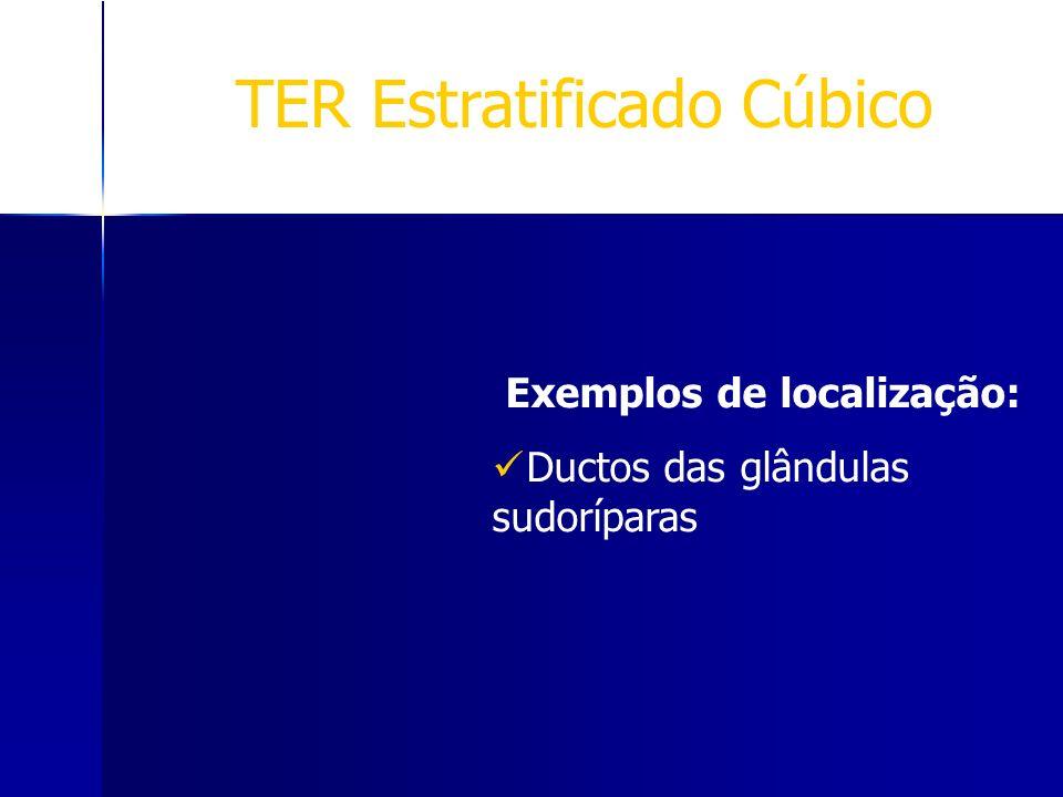 TER Estratificado Cúbico