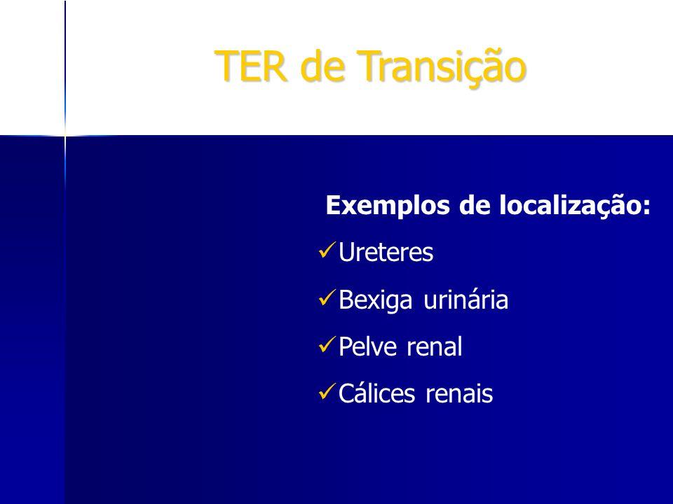 TER de Transição Exemplos de localização: Ureteres Bexiga urinária